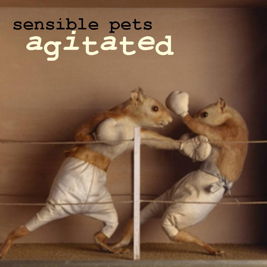 sensible pets - agitated info, credits, lyrics, and comments at, Skeleton